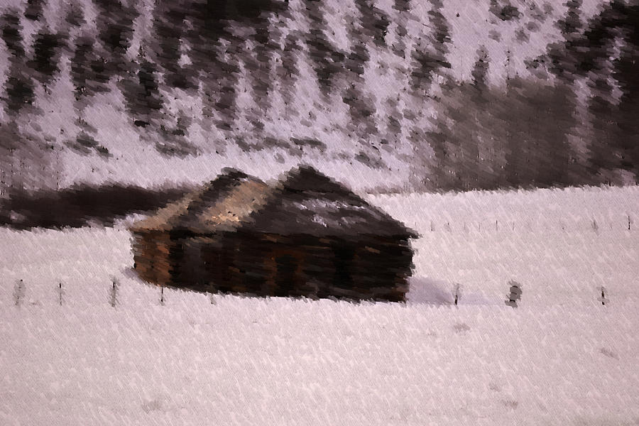 Snowed In Photograph  - Snowed In Fine Art Print