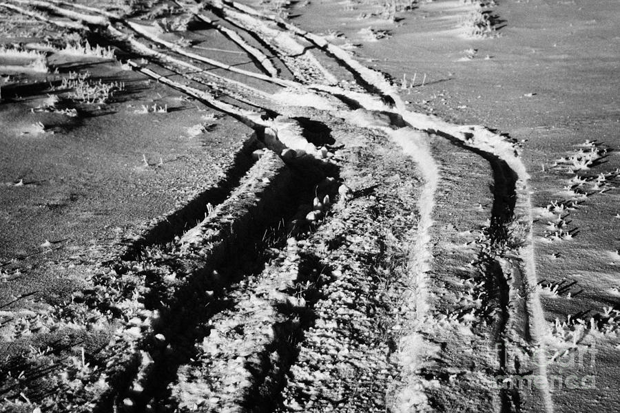 snowmobile tracks in snow across frozen field Canada Photograph