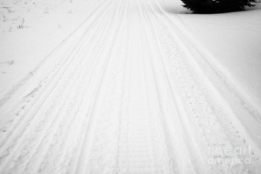 snowmobile tracks in the snow Kamsack Saskatchewan Canada Photograph  - snowmobile tracks in the snow Kamsack Saskatchewan Canada Fine Art Print