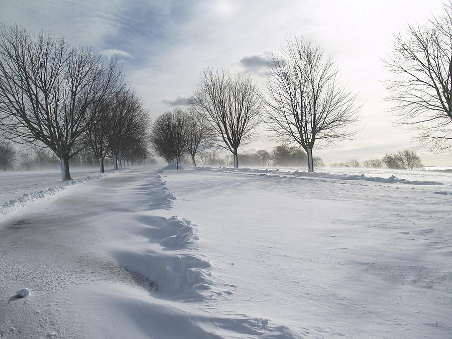 Snowscape Photograph