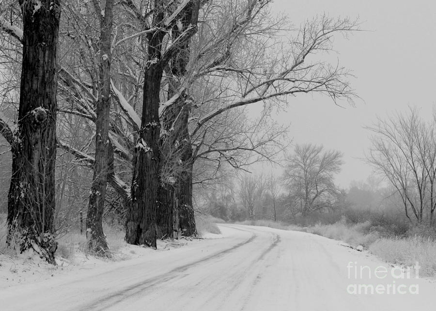 Snowy Country Road - Black And White Photograph