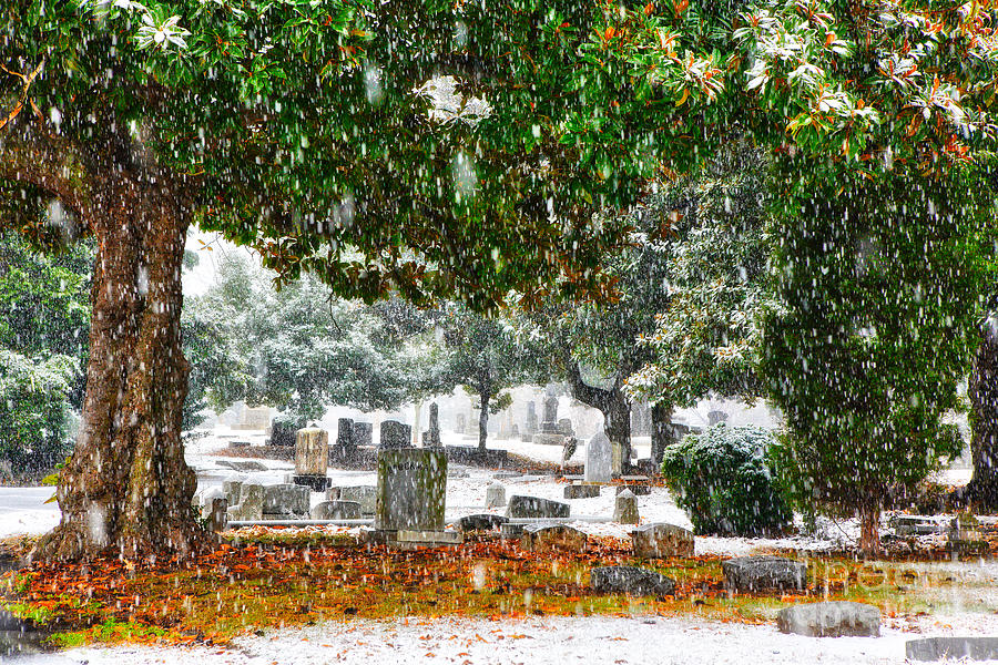 Greensboro Painting - Snowy Day At The Cemetery - Greensboro North Carolina by Dan Carmichael