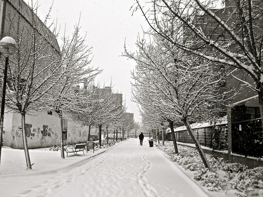 Snowy Day In Madrid Photograph