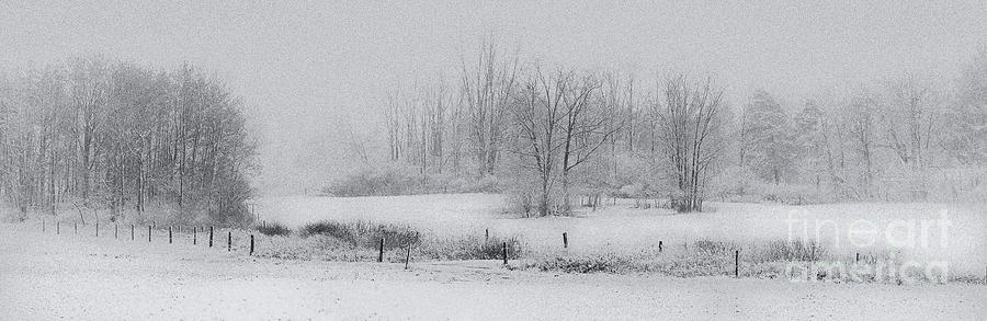 Snowy Fields Photograph  - Snowy Fields Fine Art Print