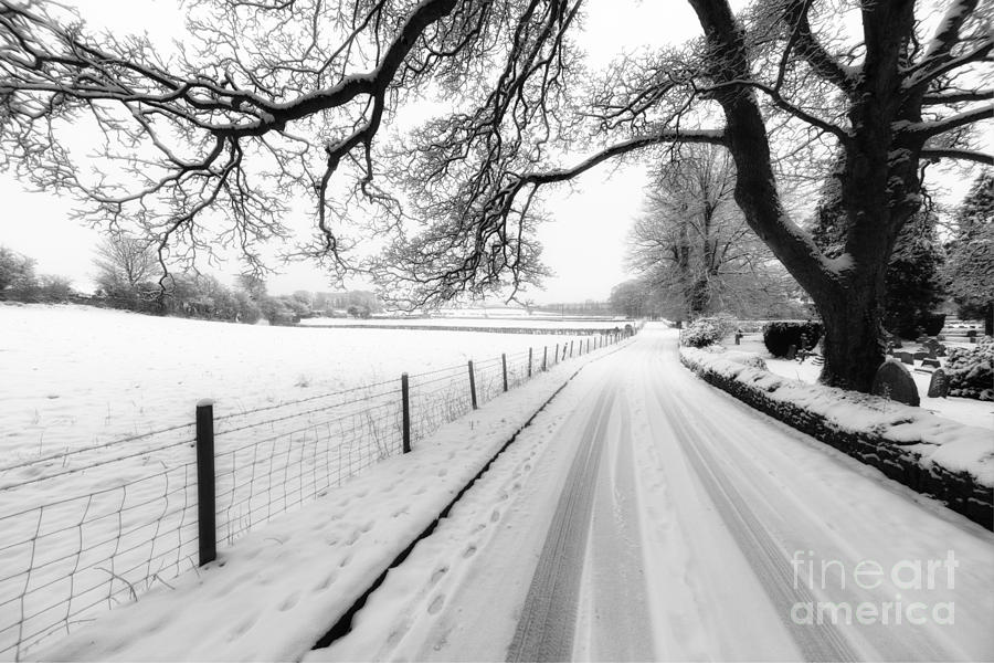 Snowy Lane Photograph