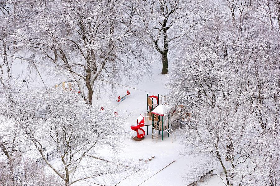 Snowy Park Photograph