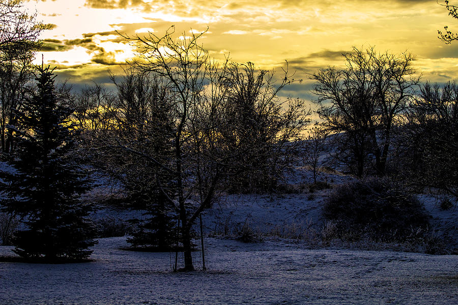 Snowy Sunset Photograph