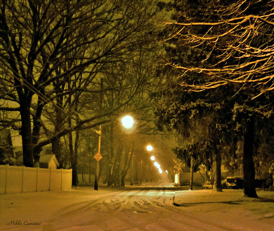 Seasonal Photograph - Snowy Winter Night by Mikki Cucuzzo