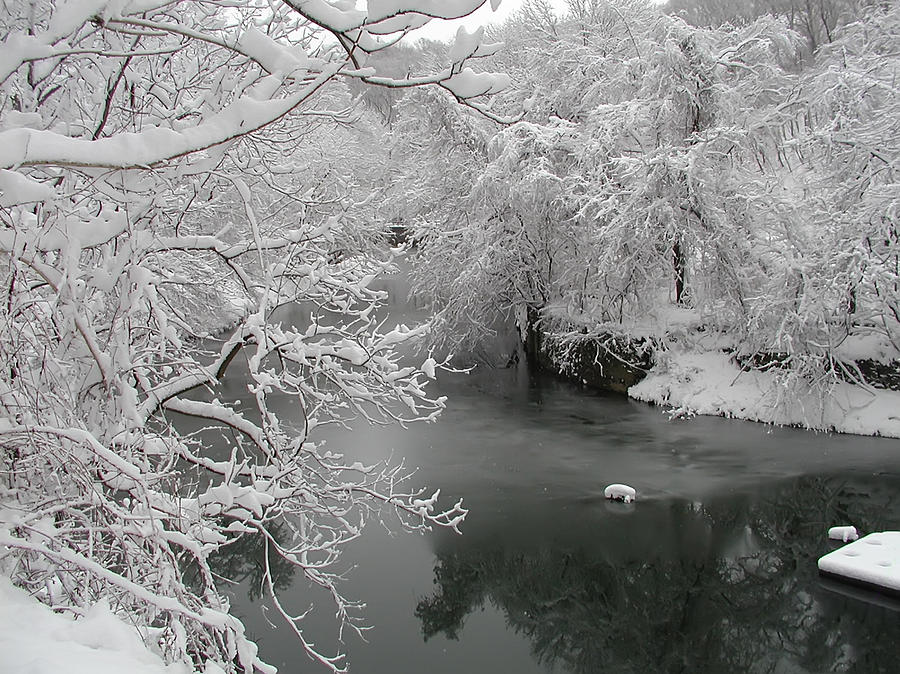 Snowy Wissahickon Creek Photograph