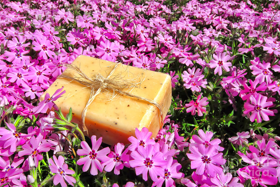 Soap On Flowers Photograph