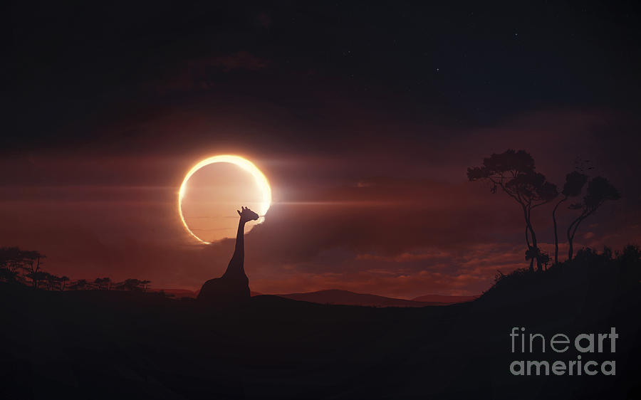 Solar Eclipse Over Africa Digital Art