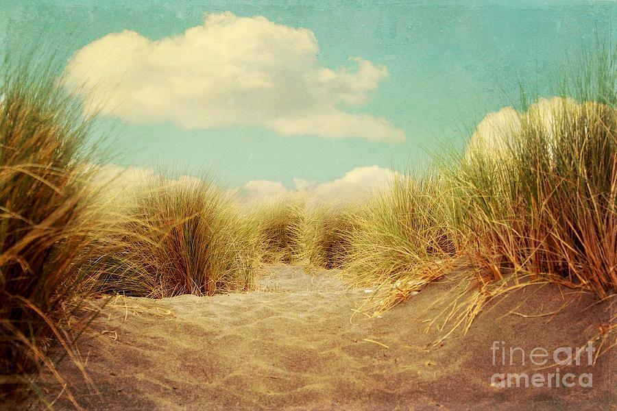 Solitude Photograph