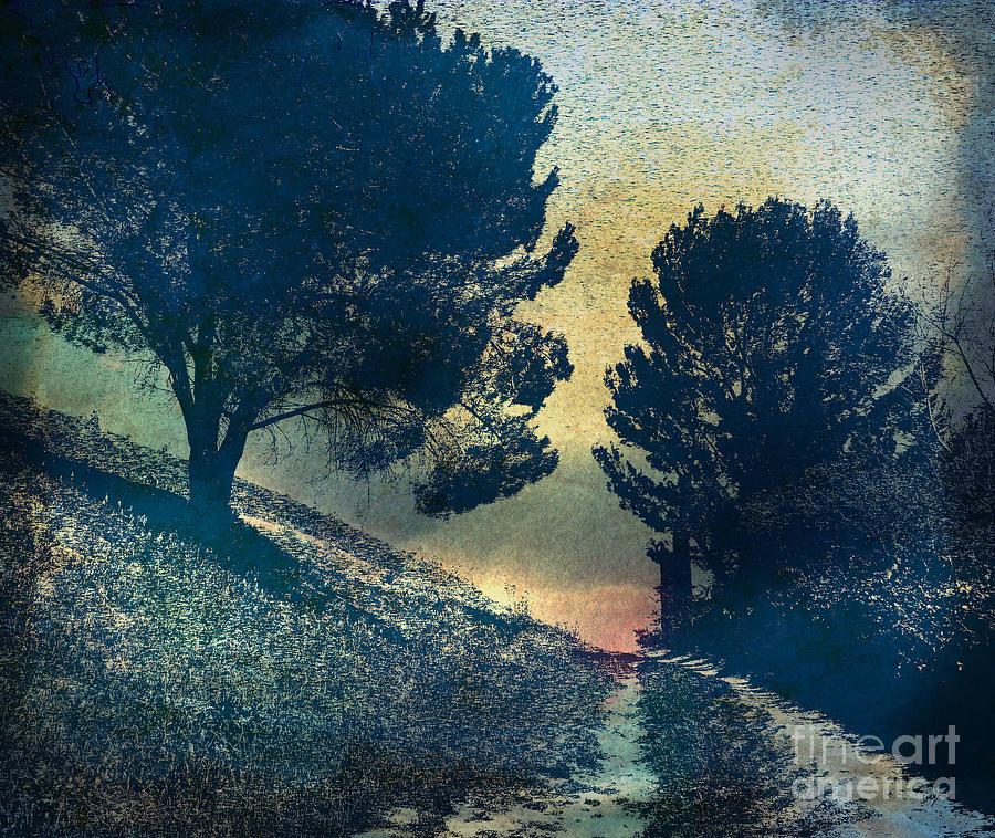 Digital Photograph - Somber Passage by Bedros Awak