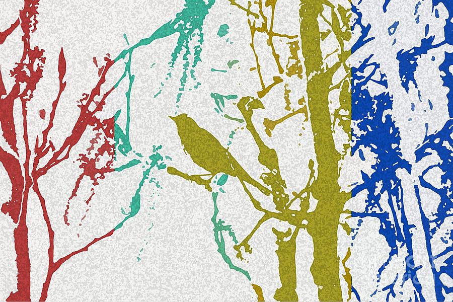 Songbird Abstract Photograph