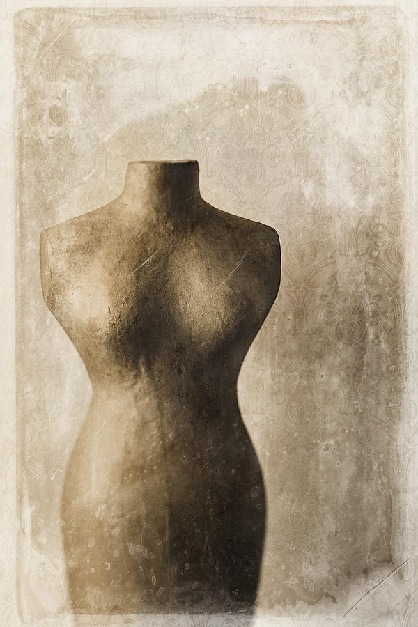 Sophistication II Photograph  - Sophistication II Fine Art Print
