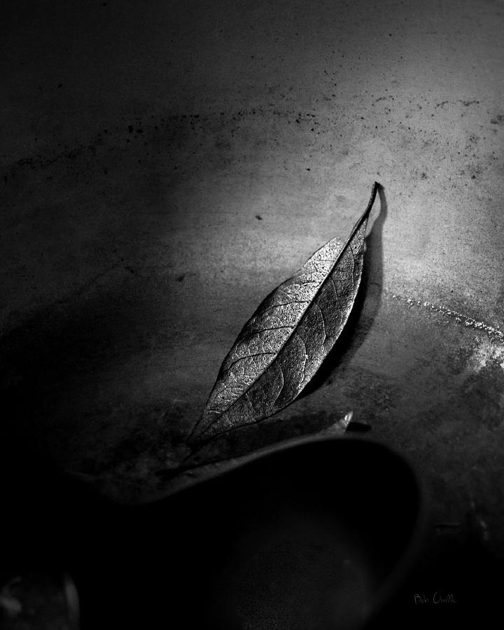 Bay Leaf Photograph - Soup Kitchen by Bob Orsillo