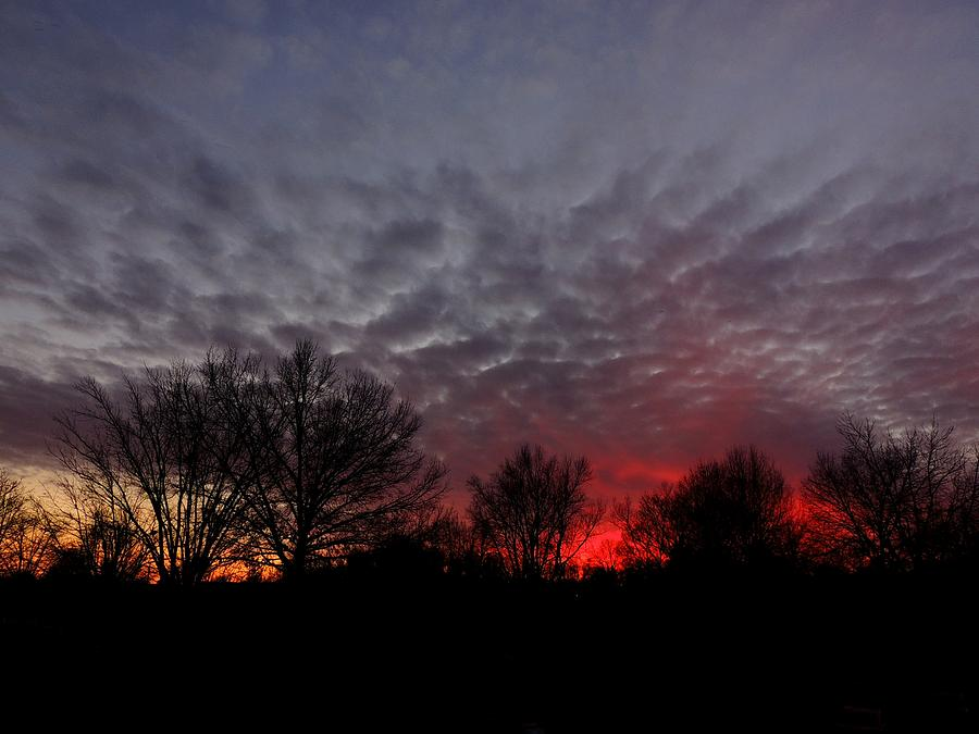 Southern Indiana Sunset Photograph  - Southern Indiana Sunset Fine Art Print