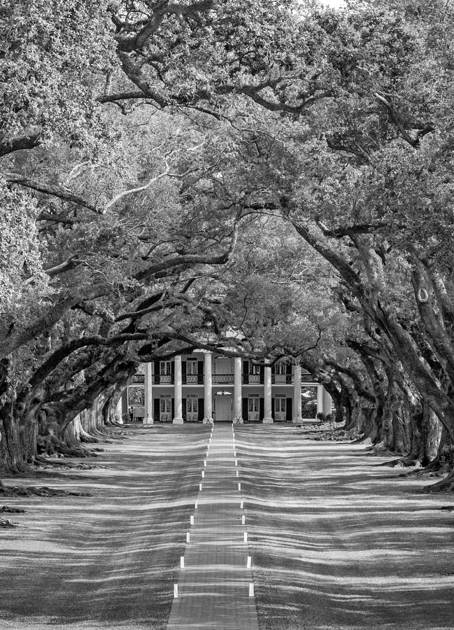 Southern Time Travel Bw Photograph