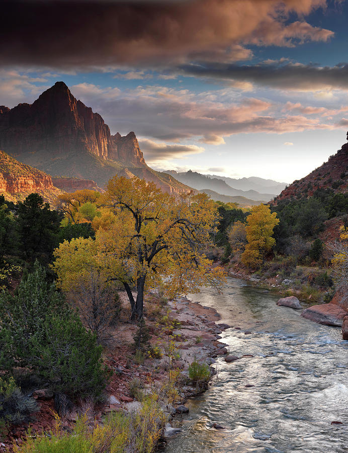 Southwest Light Along The Virgin River Photograph