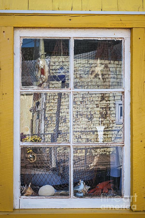 Souvenir Store Window Photograph