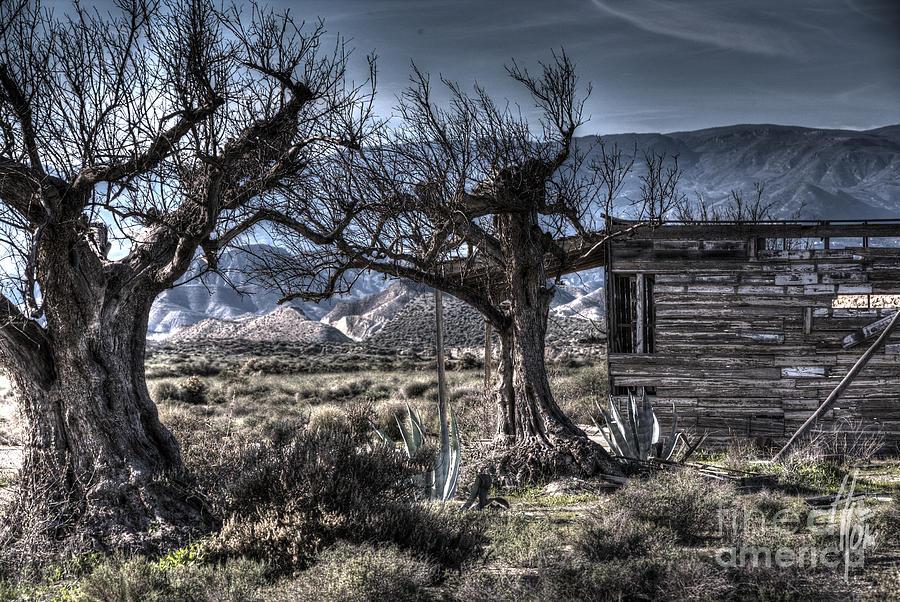 Spanish Desert Photograph