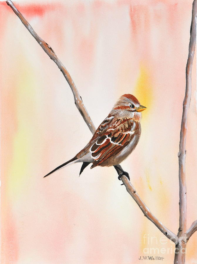 Sparrow I Painting