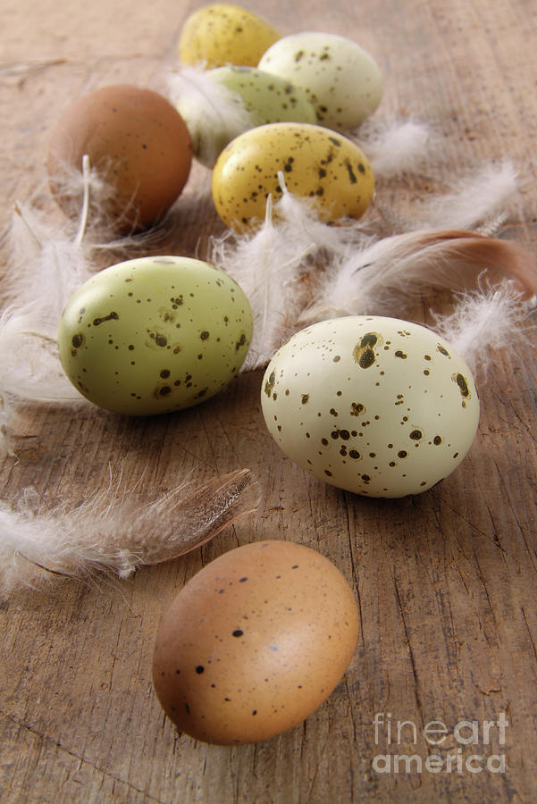 Speckled Easter Eggs  On Wooden Table  Photograph  - Speckled Easter Eggs  On Wooden Table  Fine Art Print