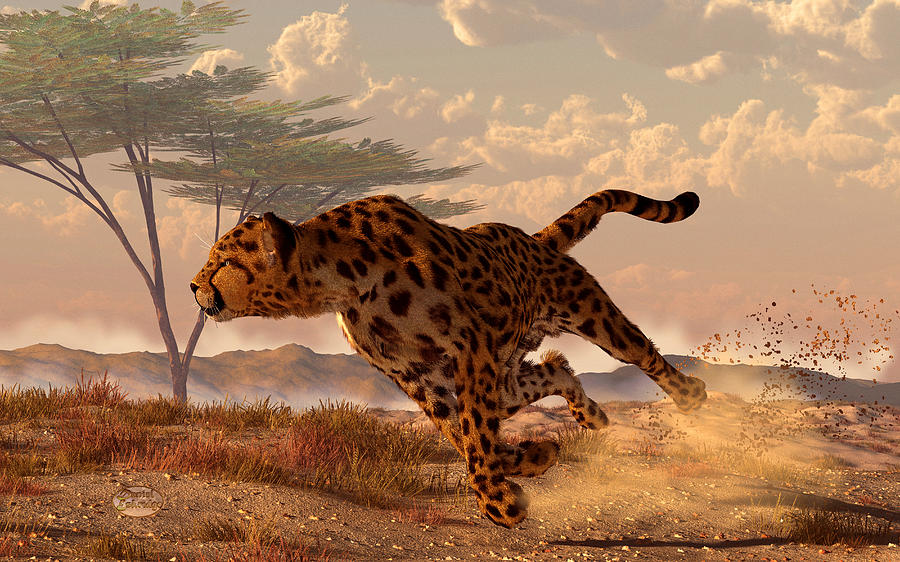Speeding Cheetah Digital Art