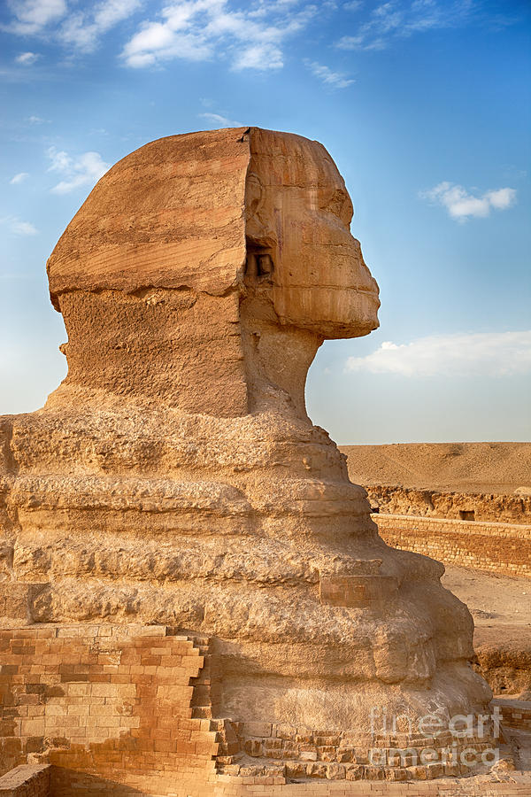 Sphinx Profile Photograph  - Sphinx Profile Fine Art Print