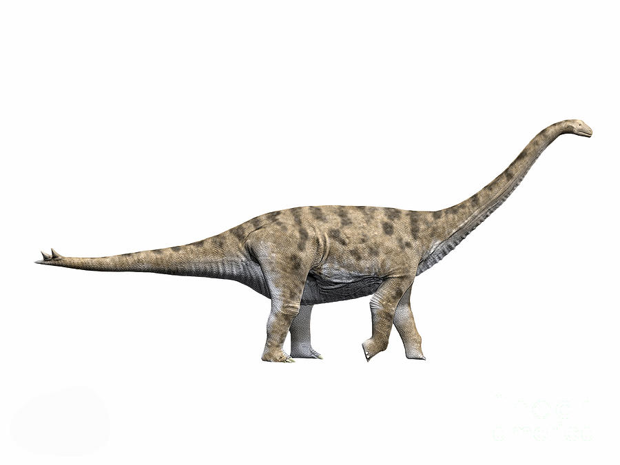 Spinophorosaurus Nigerensis, Middle Digital Art