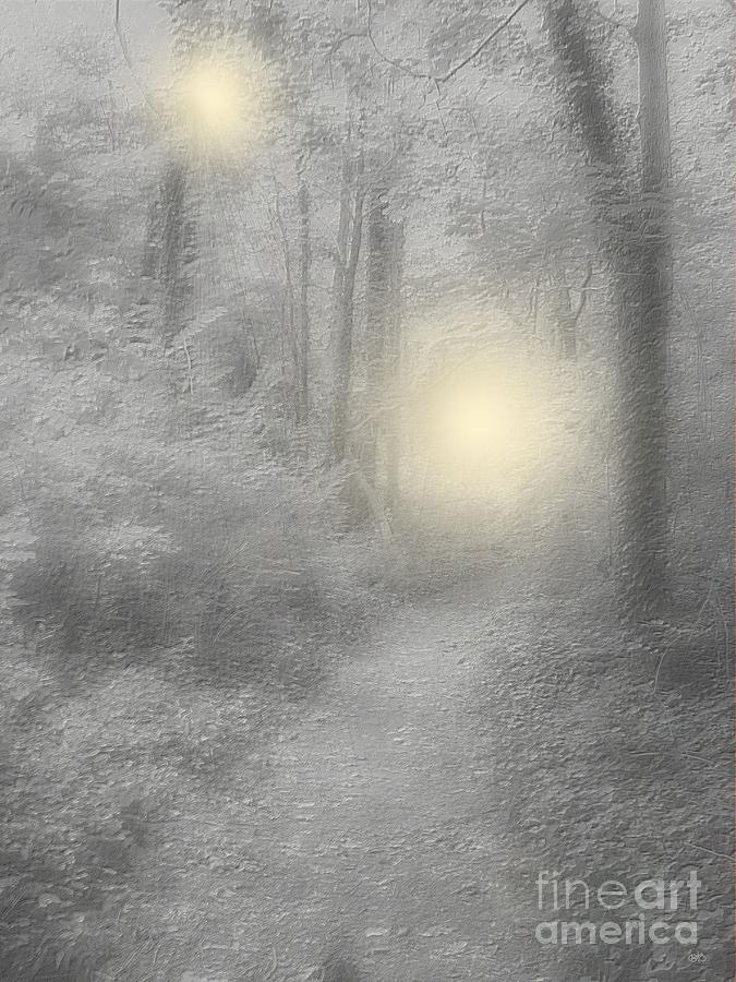 Forest Photograph - Spirits Of Avalon by Roxy Riou