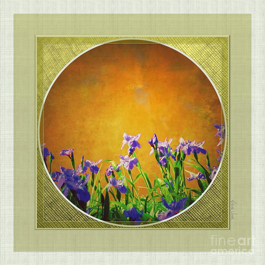 Splendor Digital Art