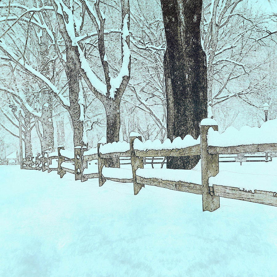 Split Rail Blues Photograph