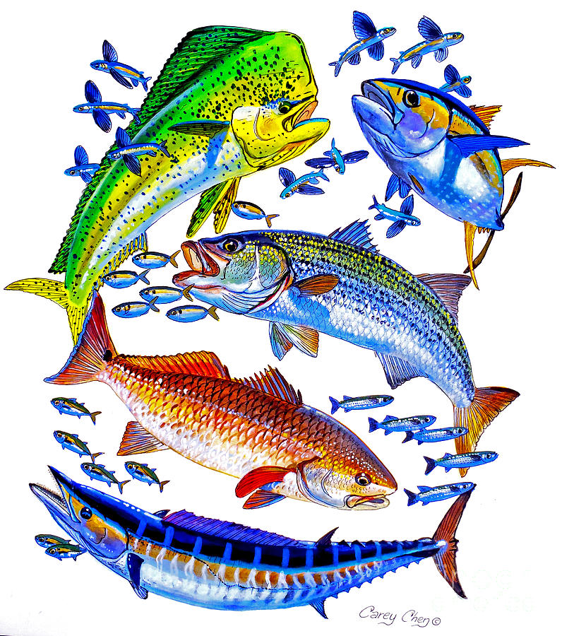 Sportfish Collage Painting  - Sportfish Collage Fine Art Print
