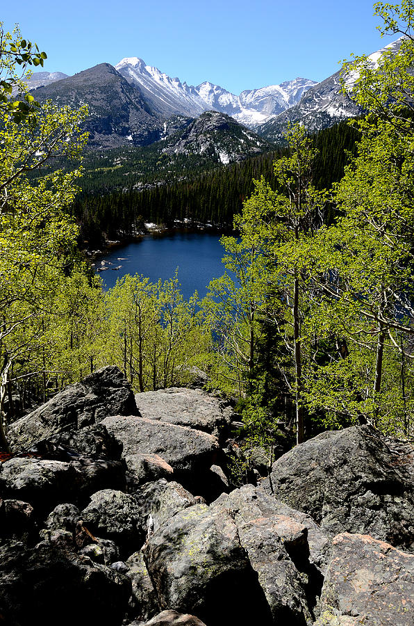Spring At Bear Lake Photograph