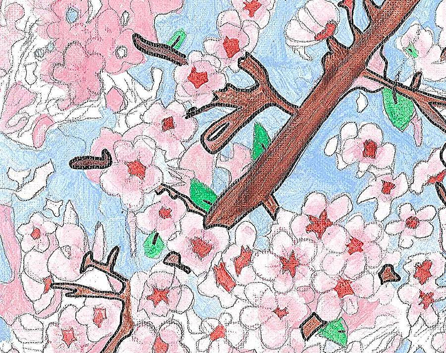 Spring Cherry Blossoms  Painting  - Spring Cherry Blossoms  Fine Art Print