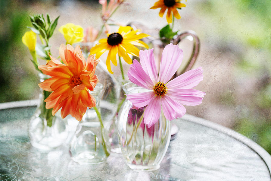 Spring Delights Photograph