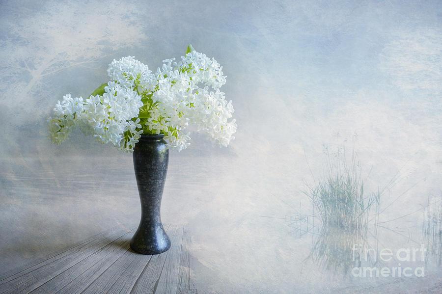 Art Photograph - Spring Flowers by Veikko Suikkanen