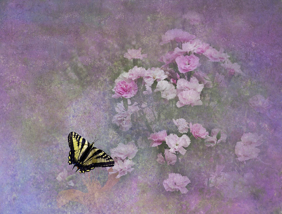 Spring Garden Photograph