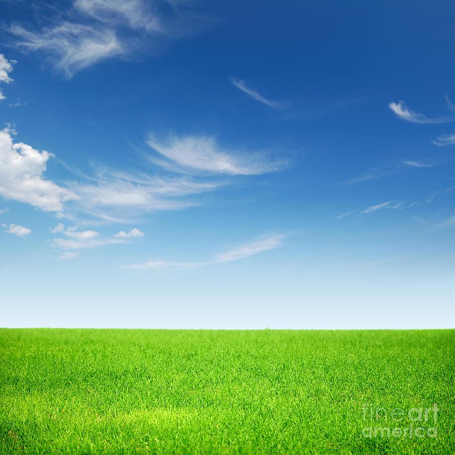 Spring Green Landscape Photograph