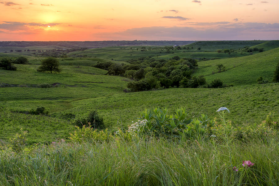 Spring In The Flint Hills Photograph
