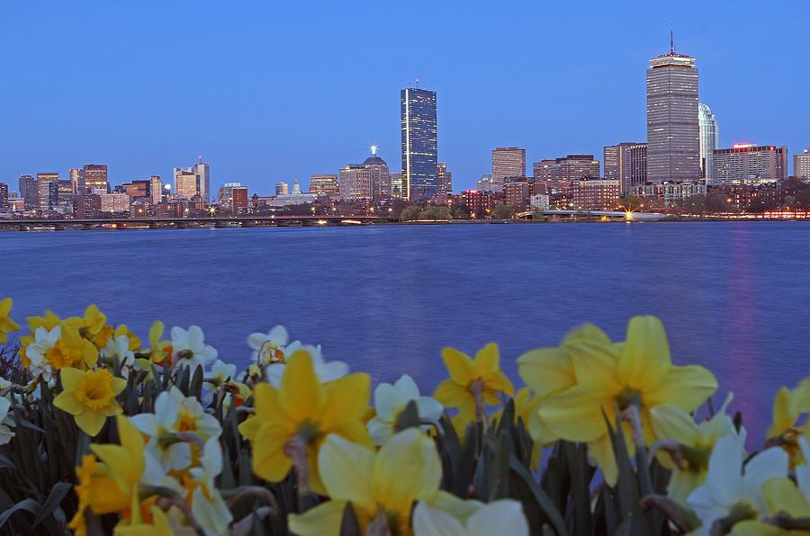 Spring Into Boston Photograph  - Spring Into Boston Fine Art Print
