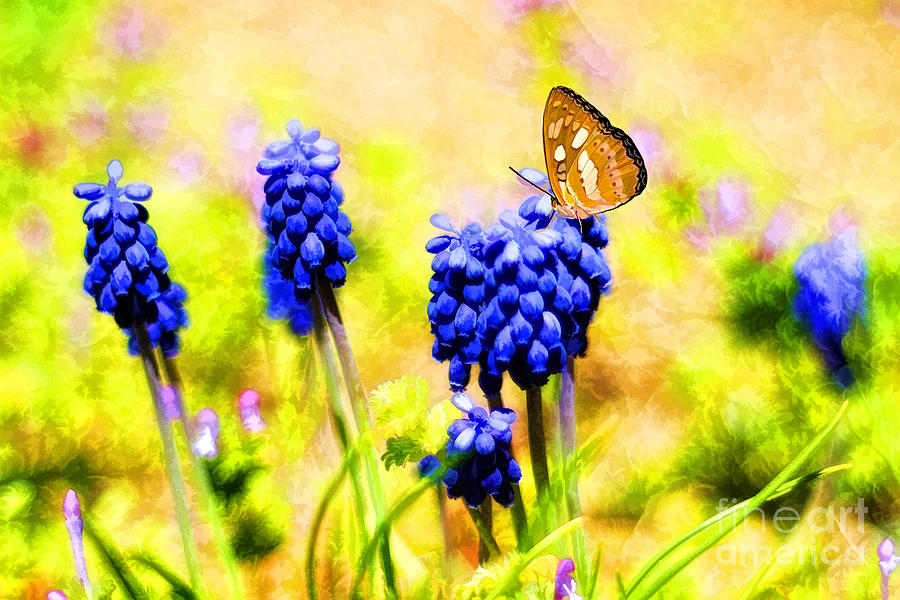 Spring Magic Photograph  - Spring Magic Fine Art Print