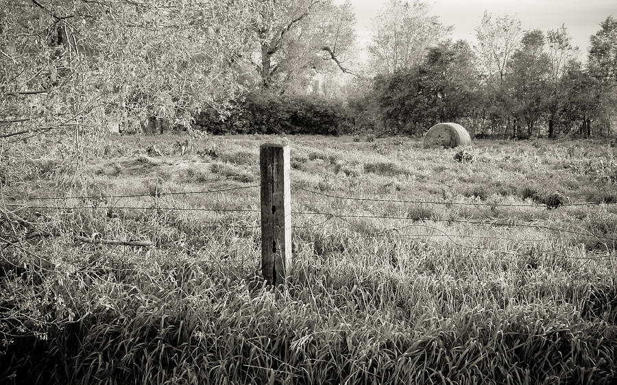 Spring Post And Bale In Black N White Photograph