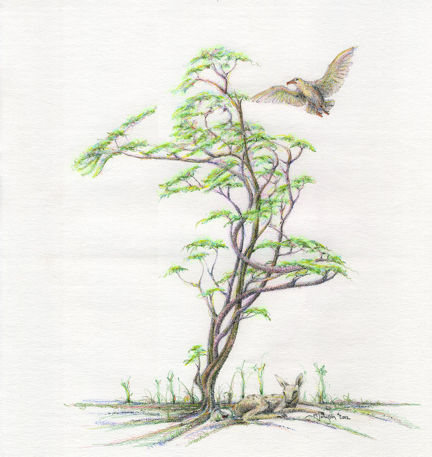 Mark Johnson Toronto Artist Tree Dancer Gaia Bird Fawn Deer Colour Pencil Drawing Woods Dryad Figure Woman Drawing - Spring Rising by Mark Johnson