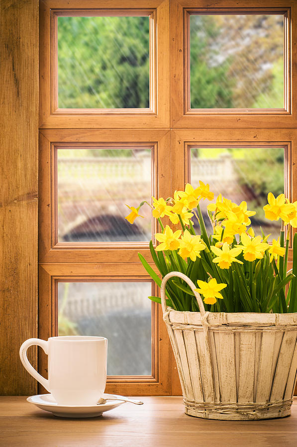Window Photograph - Spring Showers by Amanda Elwell