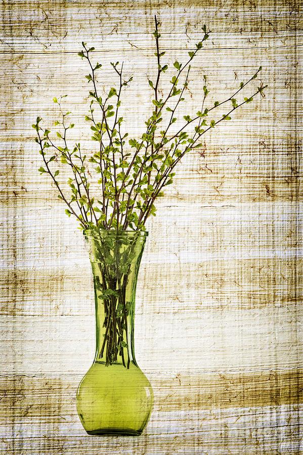 Spring Vase Photograph