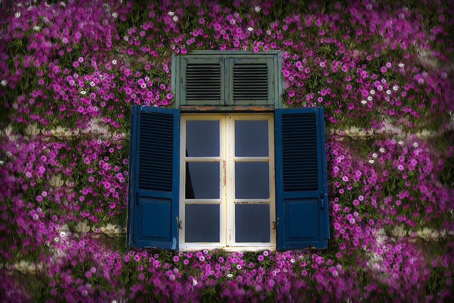 Window Photograph - Spring Window by Radoslav Nedelchev