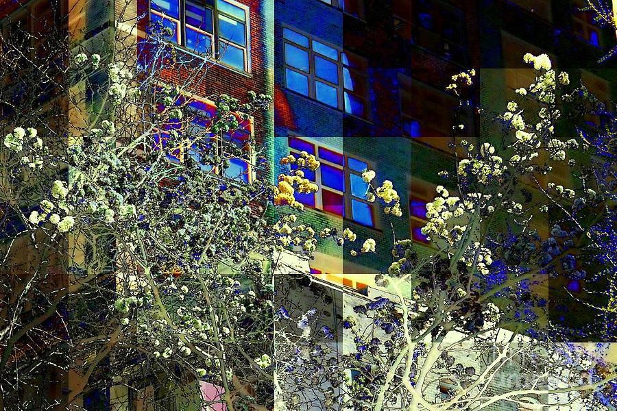 Springtime In New York 8 Photograph