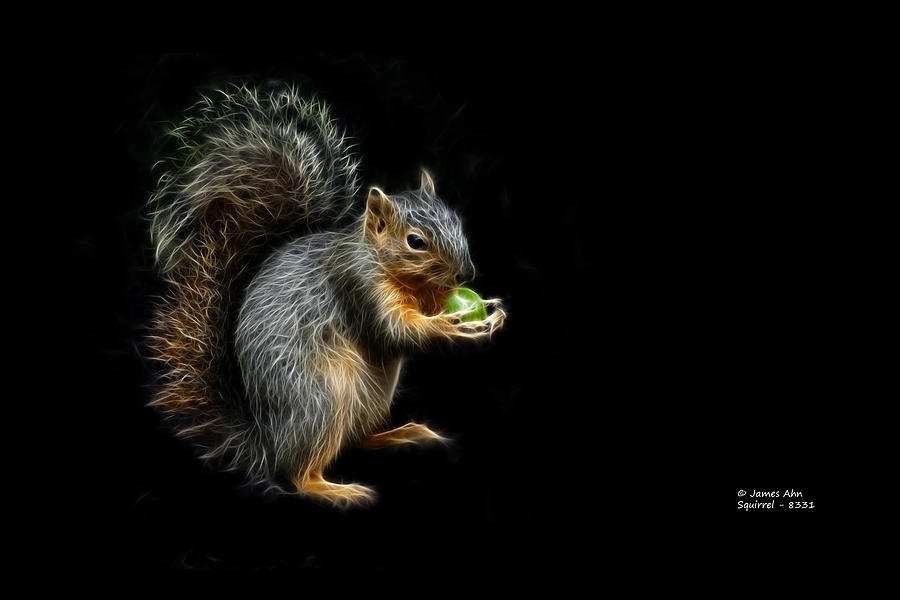 Squirrel - 8331 - F Digital Art  - Squirrel - 8331 - F Fine Art Print